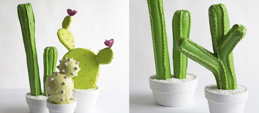 cactus_carton
