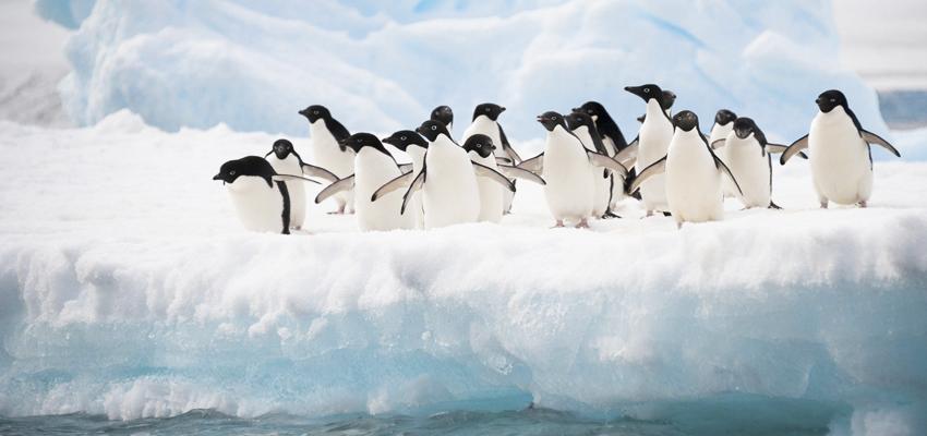 desiertos-impresionantes-mundo-antartida