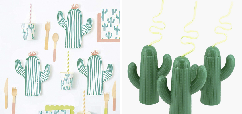 cactus-regalos-decoracion-boboli-06