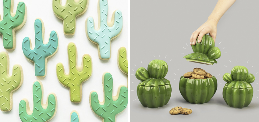 cactus-regalos-decoracion-boboli-08